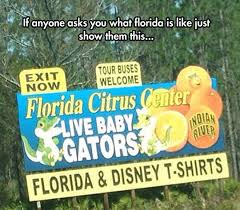 Silly Questions People Ask Floridians